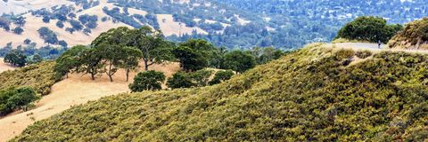 Mount Diablo hills and trees stock images