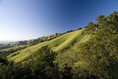 Mount Diablo state park in summer. East Bay, California Stock Photos
