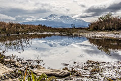 Mount Doom in a Mud Puddle. Mount Ruapehu Mount Doom in National Park, New Zealand Stock Photos