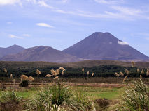 Mount Doom in New Zealand Stock Photo