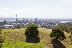 Mount Eden, Auckland Royalty Free Stock Photo