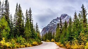 Mount Edith Cavell under cloudy skies in Jasper National Park Stock Images