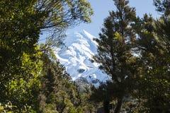 Mount Egmont. Stock Image