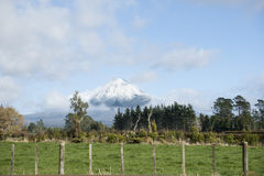 Mount Egmont. Stock Photography