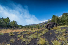 Mount Etna volcanic landscape. A landscape over the north slope of the vulcano, near Sartorius craters Royalty Free Stock Photos