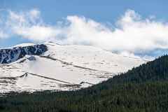 Mount Evans Colorado - Snow Cap Mountain. Snow covered Mount Evans locaed near Denver Colorado - Snow Capped Mountains and green pine forest - nature snowy royalty free stock photography