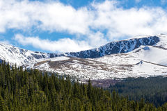 Mount Evans Colorado - Snow Cap Mountain. Snow covered Mount Evans locaed near Denver Colorado - Snow Capped Mountains and green pine forest - nature snowy royalty free stock images