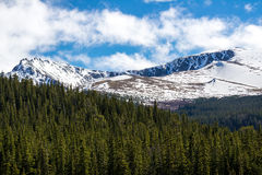 Mount Evans Colorado - Snow Cap Mountain. Snow covered Mount Evans locaed near Denver Colorado - Snow Capped Mountains and green pine forest - nature snowy royalty free stock photo