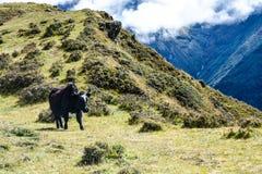 Mount Everest und Kathmandu Lizenzfreie Stockbilder