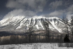 Mount Fernie Stock Photos