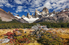 Mount Fitz Roy, Argentina Royalty Free Stock Images