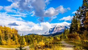 Mount Fitzwilliam, East on the Yellowhead Highway,  part of the Canadian Rockies. The lower half is dolomite. The upper half quartzite covered with lichen that royalty free stock images