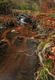 Mount forest waterfall Stock Images