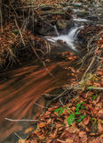 Mount forest waterfall Royalty Free Stock Photography