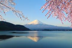 Mount Fuji, взгляд от озера Kawaguchiko стоковое изображение rf