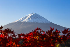 Mount Fuji с красными лист осени. Япония Стоковая Фотография RF