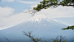 The Mount Fuji royalty free stock photos