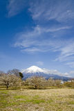 Mount Fuji. In winter time under blue sky Stock Photography
