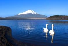 Mount Fuji Arkivfoto