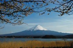 Mount Fuji Стоковая Фотография