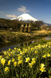 Mount Fuji стоковое изображение