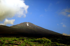 Mount Fuji. In Summer, Japan Stock Photos