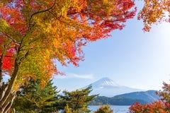 Mount fuji in autumn. Beautiful outdoor scenery landscape Stock Photography