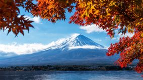 Mount Fuji in Autumn Color, Japan. Colorful Autumn in Mount Fuji, Japan - Lake Kawaguchiko is one of the best places in Japan to enjoy Mount Fuji scenery of Stock Photography
