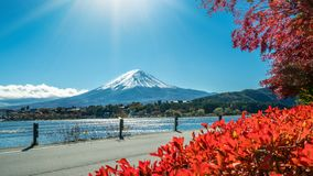 Mount Fuji in Autumn Color, Japan. Colorful Autumn in Mount Fuji, Japan - Lake Kawaguchiko is one of the best places in Japan to enjoy Mount Fuji scenery of royalty free stock photography