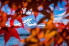Mount Fuji in Autumn Color, Japan stock image