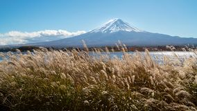 Mount Fuji in Autumn Color, Japan royalty free stock images