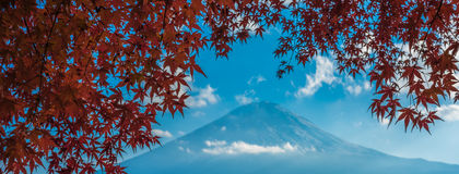 Mount Fuji and autumn leaves, Kawaguchiko lake, Japan Royalty Free Stock Photo