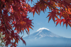 Mount Fuji and autumn maple leaves, Kawaguchiko lake, Japan Stock Photo
