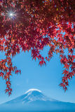 Mount Fuji and autumn maple leaves, Kawaguchiko lake, Japan Royalty Free Stock Photography