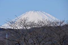 Mount Fuji. Beautiful Mount Fuji snow capped stock photography
