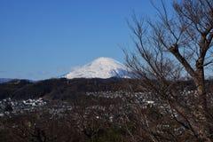 Mount Fuji. Beautiful Mount Fuji snow capped royalty free stock photo