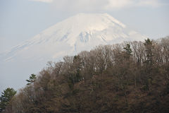 Mount Fuji behind forested ridge. Mount Fuji looms behind a Japanese forested hill Stock Photo
