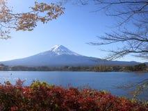 Mount Fuji beskådade mellan nedgångsidor och trädfilialer Royaltyfria Bilder