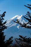 Mount Fuji with blue sky Stock Images