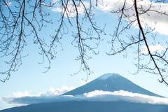 Mount Fuji through branches of trees stock photos