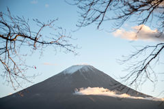 Mount Fuji through branches of trees stock image