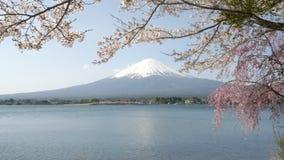 mount fuji calm and a calm lake kawaguchi