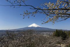 Mount Fuji Stock Photos