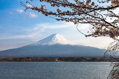 Mount Fuji and cherry blossoms in spring, Kawaguchi lake Japan Royalty Free Stock Photos
