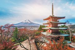 Mount Fuji, Chureito Pagoda in Autumn. Mount Fuji and Chureito Pagoda at sunrise in autumn, Japan. The Pagoda is in Arakura Sengen Shrine where tourist can see stock photo