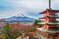 Mount Fuji, Chureito Pagoda in Autumn. Mount Fuji and Chureito Pagoda at sunrise in autumn, Japan. The Pagoda is in Arakura Sengen Shrine where tourist can see stock images
