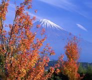Mount Fuji CI Stock Photo