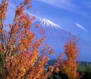 Mount Fuji CI. Beautiful Fall leaves with Mount Fuji Stock Photo