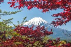 Mount Fuji with Clear sky at Kawakuchigo lake. Long exposure. Stable Lake Kawakuchigo Royalty Free Stock Image