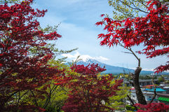Mount Fuji with Clear sky at Kawakuchigo lake. Long exposure. Stable Lake Kawakuchigo Stock Image